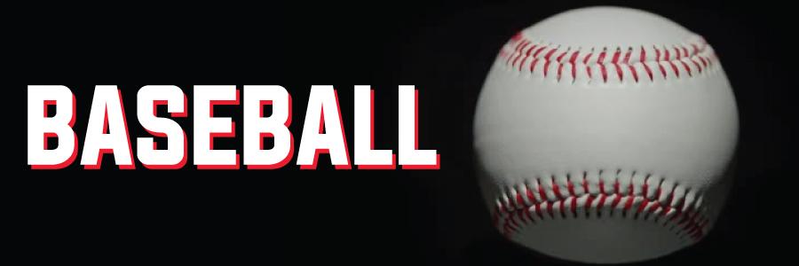 Baseball web badge